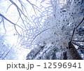 霧氷 真冬 冬山の写真 12596941