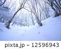 冬山 霧氷 真冬の写真 12596943