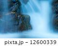 渓流 12600339