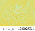 背景イメージ 12602531
