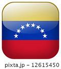 国家 釦 公式のイラスト 12615450