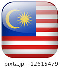 国家 釦 公式のイラスト 12615479