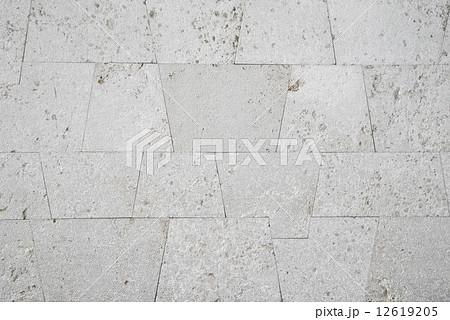 琉球石灰岩の壁 12619205
