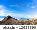 コタキナバル(キナバル山) 12628890