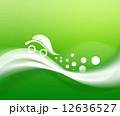 エコカー エコ エコロジーのイラスト 12636527