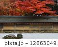 石庭 枯山水 龍安寺の写真 12663049