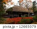 秋の平家の里 12665079