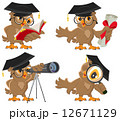 Set owl 12671129