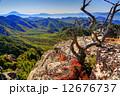 枯木 金峰山 富士の写真 12676737