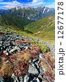 北アルプス・鹿島槍ヶ岳山頂直下のウラシマツツジの紅葉と剣・立山 12677178