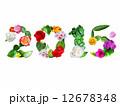 西暦2015_ガーデン 12678348