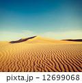 ラジャスタン ラジャスターン ラジャスタン州の写真 12699068