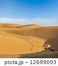 砂漠 砂丘 ラジャスタンの写真 12699093