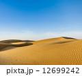 砂丘 砂漠 ラジャスタンの写真 12699242