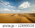 砂丘 砂漠 ラジャスタンの写真 12699528