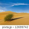 砂漠 砂丘 ラジャスタンの写真 12699742