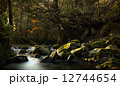 ネコバリ岩 12744654