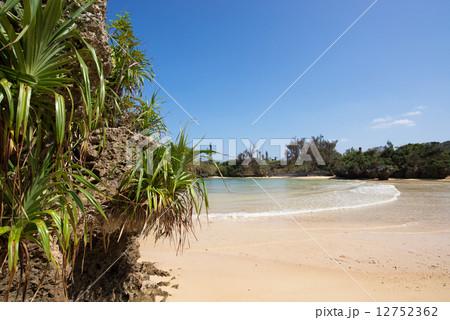 沖縄のビーチ・宇加地近隣公園ビーチ 12752362