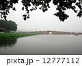 杭州 杭州市 睡蓮 12777112