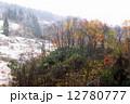 秋 晩秋 紅葉の写真 12780777