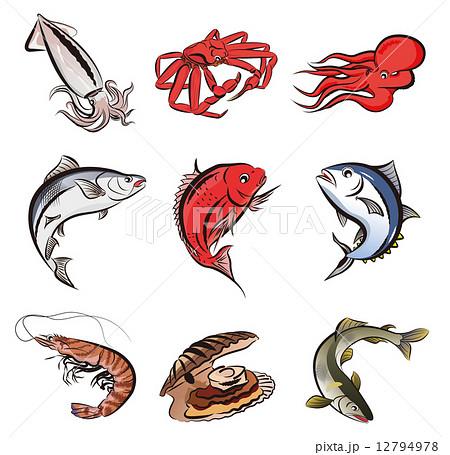 魚いろいろ 12794978