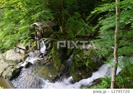 渓流の水車小屋 (徳島県三好市山城町半田岩) 12795720