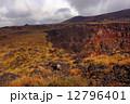 大島三原山噴火口 12796401