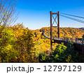 吊り橋 府民の森 ほしだ園地の写真 12797129