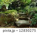 石段 石 階段の写真 12830275