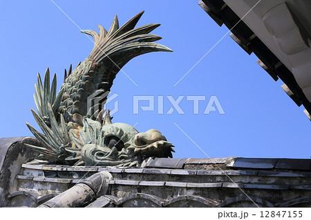 高知城天守閣の鯱 12847155