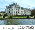 Chateau Chenonceau or Ladies Castle (France). 12847362