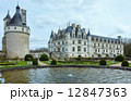 Chateau Chenonceau or Ladies Castle (France). 12847363