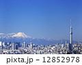 快晴青空・富士山と東京スカイツリーそして東京都心の高層ビル群を一望 382 12852978