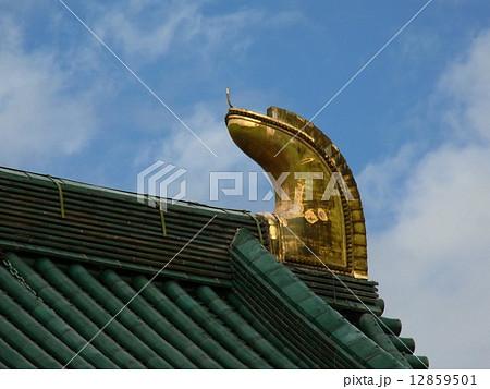 平安神宮の屋根に金色に輝く鴟尾(しび) 12859501