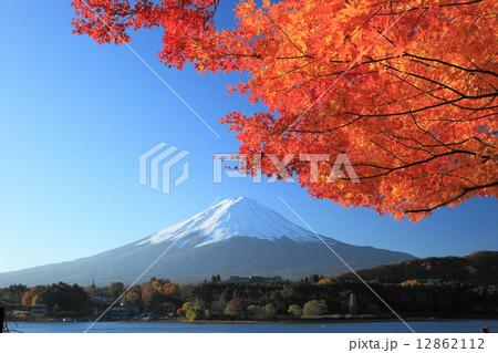 富士河口湖紅葉 12862112