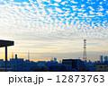 青空 空 うろこ雲の写真 12873763
