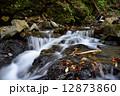 清流 貴船川 河川の写真 12873860