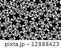 背景素材壁紙(黒い星屑, 暗黒, ダーク, 黒, ) 12888423