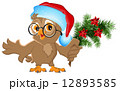 Owl in a Santa Claus hat holding a fir branch 12893585