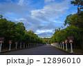 橿原神宮参道 12896010