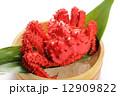 花咲ガニ 茹でガニ ボイル蟹の写真 12909822