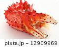 花咲ガニ カニ爪 茹でガニの写真 12909969