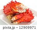 花咲ガニ カニ爪 茹でガニの写真 12909971