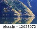 奥多摩湖の黄葉 12928072