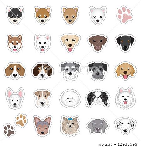 犬の顔のイラストのイラスト素材 12935599 Pixta