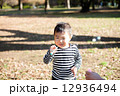 シャボン玉で遊ぶ男の子 12936494