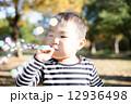 男の子 幼児 子供の写真 12936498