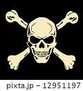 骨 アート 人体のイラスト 12951197