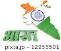 Map illustration of India with flag 12956501