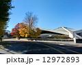 駒沢公園 スポーツ施設 駒沢オリンピック公園の写真 12972893
